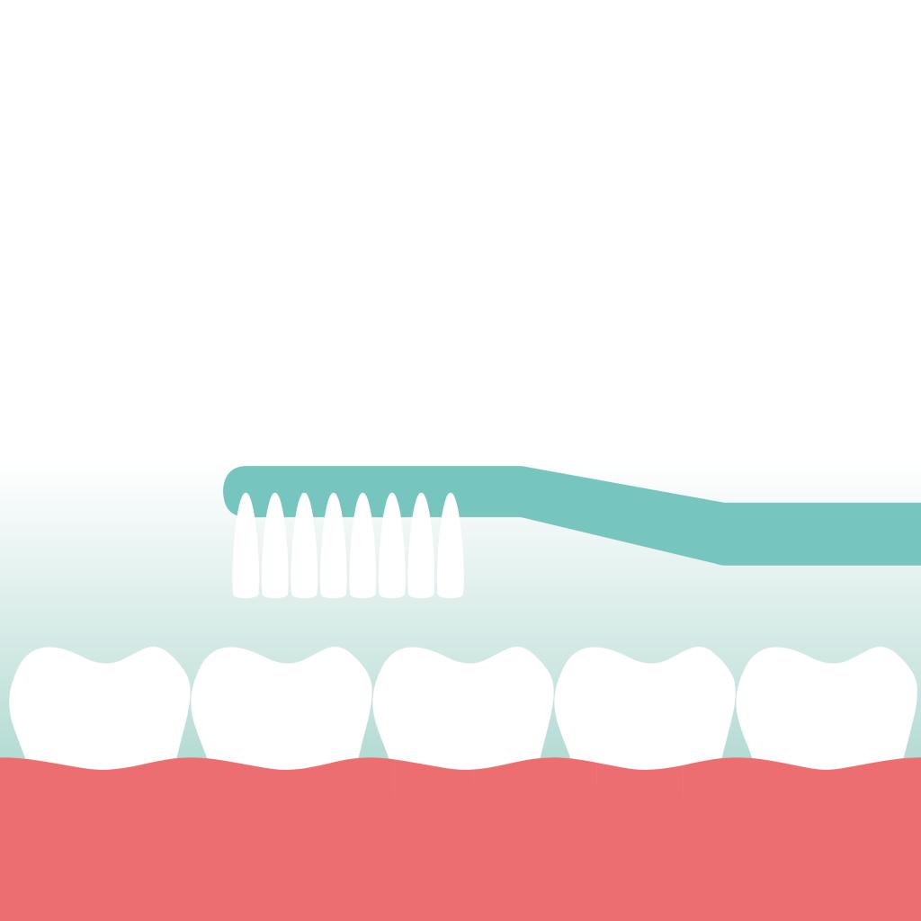 Tandenborstel vervang je elke 10 weken door Mondzorg Leusden